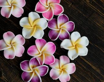 4pcs Temple Tree Flowers /Bali's Flower