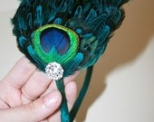 Peacock  Eye Headband