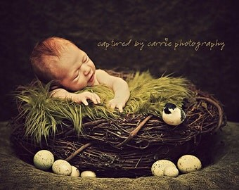 SET Olive Faux Fur, Wood Branch Nest, Owl Nest, Bird Nest, Newborn Nest, Newborn Photography, Photo Prop