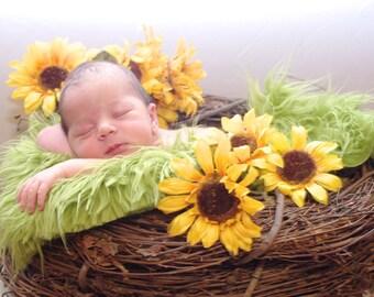 SET Olive Fur and Wood Branch Nest Owl Baby Bird Photography Prop Newborn