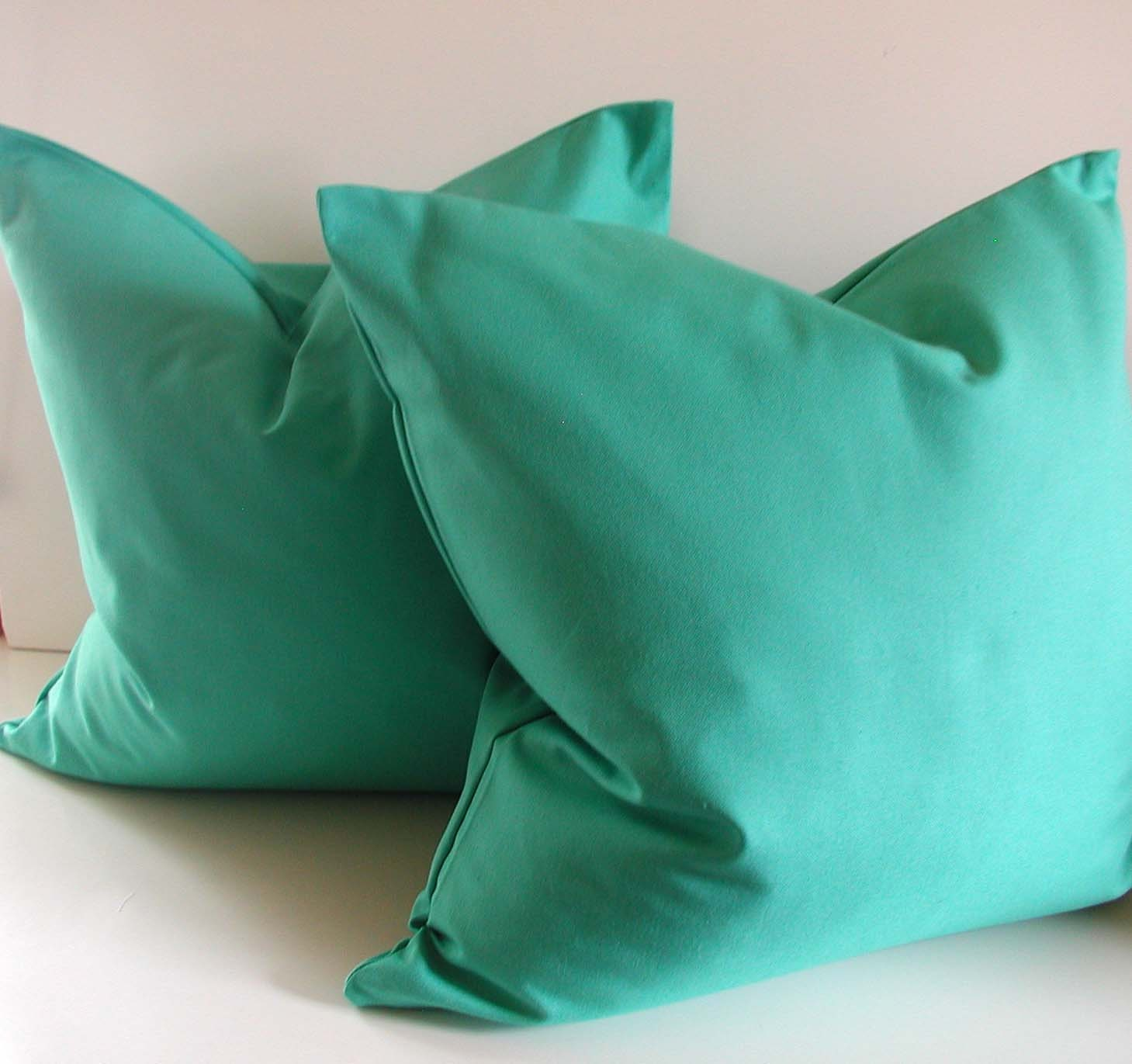 Decorative Pillows In Turquoise : Set of Two Turquoise Pillows 20 inch Decorative Pillow