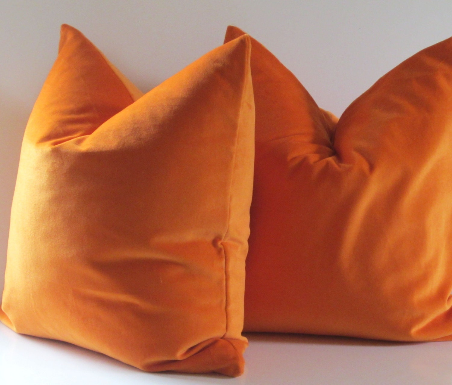 Set of Two Decorative Pillows 20 inch designer quality