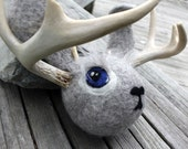 Gray Jackalope Head with Real Deer Antler Sheds Dog Toy Super Strange
