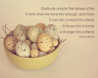 GRATITUDE, eggs, nature, quote, words, photograph, home decor, kitchen wall art
