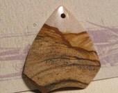 Picture Jasper pendant bead  ........... 40 x 37 x 6mm   .... PJpb1818