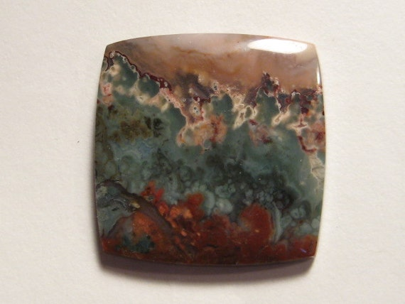 Prudent Man  Plume Agate cab   ...    26  x 26 x 4 mm thick       543
