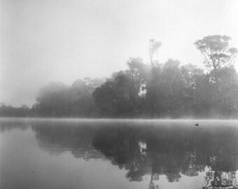 Floating Duck- Fine Art Photography- Capitola California