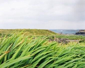 Emerald Breeze- FIne Art Photography- Ireland- Landscape