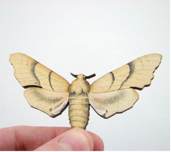 yellow moth pin brooch - natural history