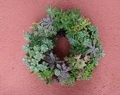 Large Succulent Round Wreath