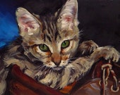 Commission Your Own Pet Portrait by Amy Schrom
