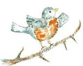 Robin Art, Whimsical Art, Animal Painting, Bird Nursery, Nursery Art Print - Dancing Sweet Puff - 8x10 Fine Art Print