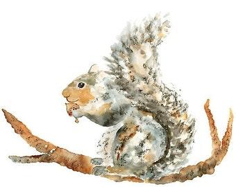 Squirrel Print, Watercolor, Animal Nursery Art, squirrel, grey, nursery print- 8x10