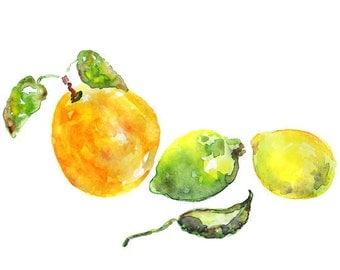 watercolor fruit, kitchen art print, kitchen watercolor, Kitchen decor, lemon, orange, lime