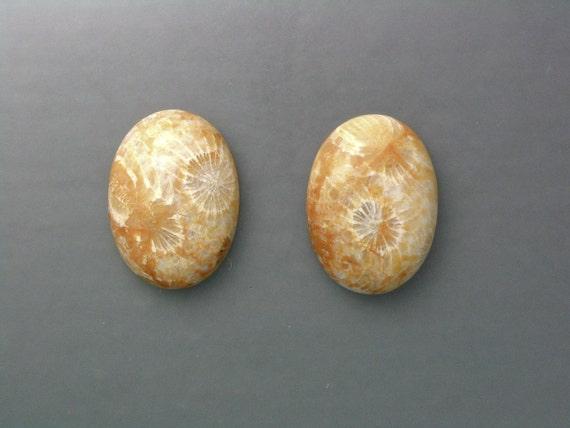 Agatized Coral Cabochon Pair