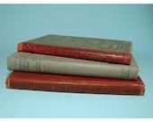 Vintage School Books -  circa 19th Century-Sale