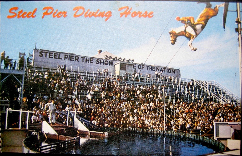Vintage Souvenir Postcard Steel Pier Diving Horse