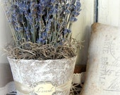 French Country Lavender Bouquet