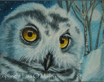 "Aceo Print ""Moonwise"" Snowy Owl"