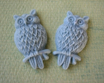 2PCS - Slate - Resin Owl Cabochons - 25mm Matte Finish - Jewelry Findings by ZARDENIA