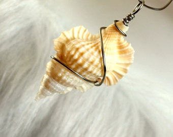 Wire wrapped maple leaf seashell pendant. wire wrapped seashell charm key fob baby frog romantic white ivory ornament nautical