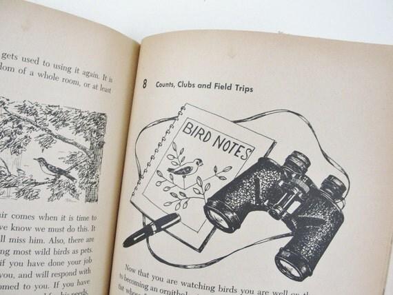 Vintage Book, Vintage Childrens Bird Book, Golden Adventure Book, 1950s, Natural History Book, William Jerr