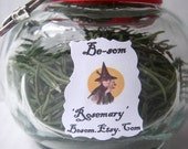 Protection / Purification - Rosemary - Organic and Naturally Dried - perfect for all your herbal tinctures, oils, brews and blends.