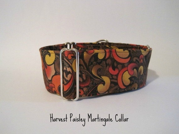 Martingale Dog Collar, Autumn Martingale Collar, Fall Colors, Harvest, Autumn Dog Collar, Sighthound Collar