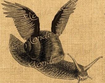 Flying   snail wings fly at animal fantasy vintage ephemera for iron fabric napkins tea towel handbag pillow Sheet n.423