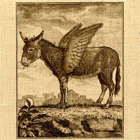 Flying Donkey Digital sheet Fantasy animals Wings Large nature image Download For original gift fabric tag label napkins burlap pillow n790