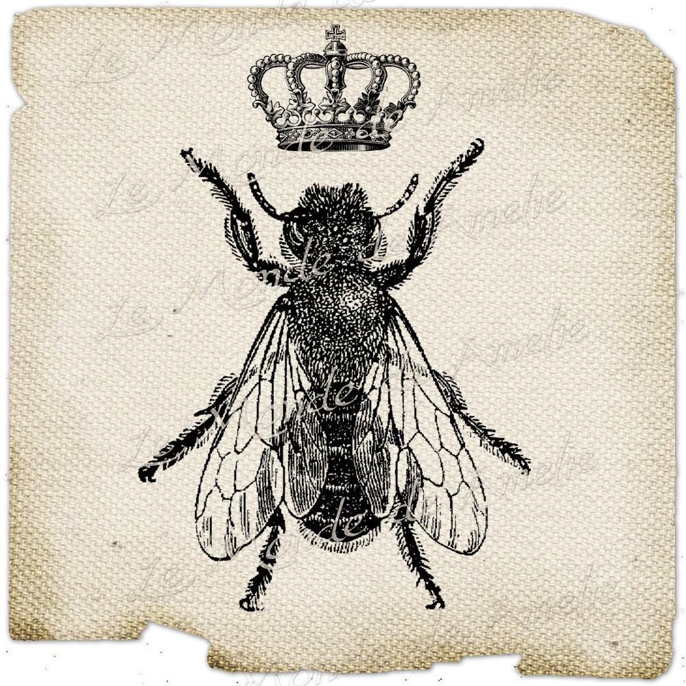 vintage bee clip art - photo #34