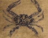 Instant Download Vintage Crab illustration Download and Print Image Transfer Digital Collage Sheet by Room29 - Sheet no. 062