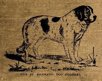 Instant Download Vintage St. Bernard Dog - Download and Print - Image Transfer - Digital Sheet by Room29 - Sheet no. 040