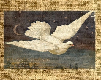 INSTANT DOWNLOAD - The Dove, Vintage Postcard - Download and Print - Image Transfer - Digital Collage Sheet by Room29 - Sheet no. 134