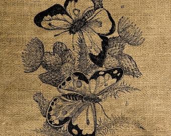 INSTANT DOWNLOAD Butterflies Vintage Illustration - Image Transfer - Digital Collage Sheet by Room29 - Sheet no. 156