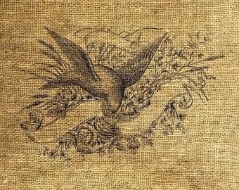 INSTANT DOWNLOAD Bird and Banner Vintage Illustration Download and Print Image Transfer Digital Sheet by Room29 Sheet no. 167