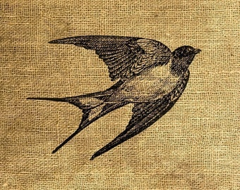 INSTANT DOWNLOAD - Swallow Vintage Illustration - Download and Print - Image Transfer - Digital Sheet by Room29 Sheet no. 175