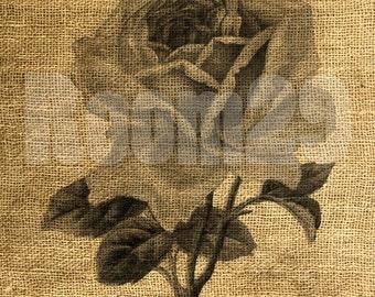 INSTANT DOWNLOAD Vintage Rose - Download and Print - Image Transfer - Digital Sheet by Room29 Sheet no. 479