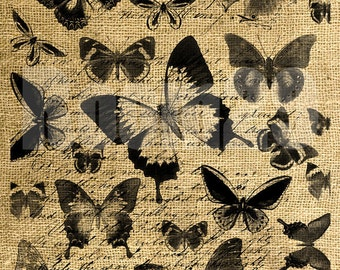 INSTANT DOWNLOAD Butterflies on Vintage Text - Download and Print - Image Transfer - Digital Sheet by Room29 - Sheet no. 515