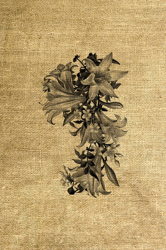 INSTANT DOWNLOAD Flowers in Sepia and Black and White - Download and Print - Image Transfer - Digital Sheet by Room29 Sheet no. 567