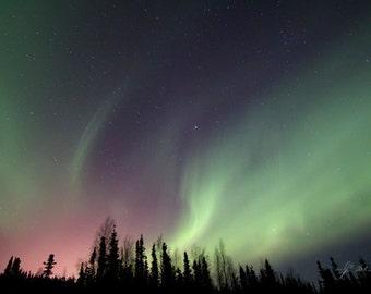 aurora landscape, celestial photography, fine art print, northern lights, night sky, green lights