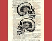 Pair of Laughing Skulls (skull2x2) - upcycled 8x10 1898 dictionary page print - BONUS - Buy 3 Prints, Get 1 More For FREE