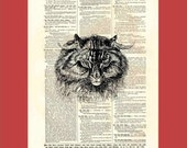 P.O.'d Cat Giving the Evil Eye (cat03) - upcycled 8x10 1898 dictionary page print - BONUS - Buy 3 Prints, Get 1 More For FREE