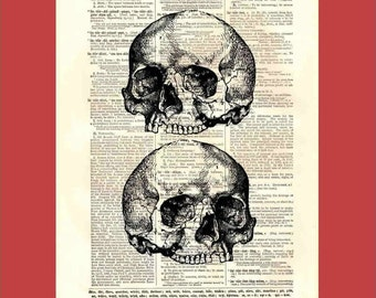 Vintage Twin Jawless Skulls (skull3x2) - upcycled 8x10 1898 dictionary page print - BONUS - Buy 3 Prints, Get 1 More For FREE