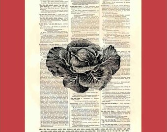 Vintage Big Head of Cabbage - upcycled 8x10 1898 dictionary page print - BONUS - Buy 3 Prints, Get 1 More For FREE