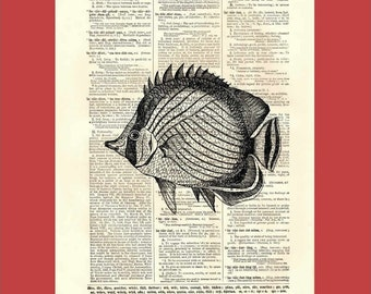Funky Fish - upcycled 8x10 1898 dictionary page print - BONUS - Buy 3 Prints, Get 1 More For FREE