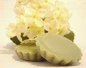 Coconut Lime Verbena Scented Tarts, 5 Tarts, Highly Scented, Natural Soy Wax