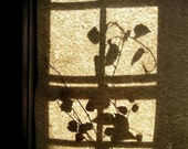 Silhouette photograph, abstract photo, film grain, vintage look, home cottage decor, gift under 30