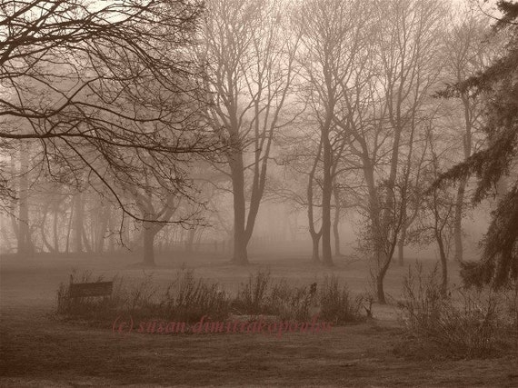 Scenery photograph - Misty Morning - sepia, wall art, home office decor, gift 20, trees, forest, Canada