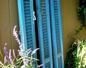 Antique French Blue Shutter with original Hardware,